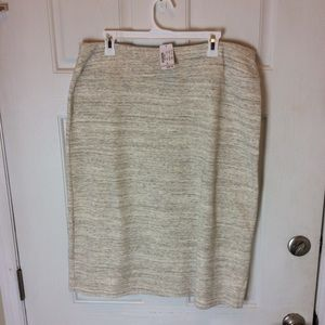 Christopher and Banks stretch skirt